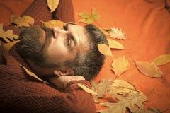 Jahreszeit und Herbst stockfotografie