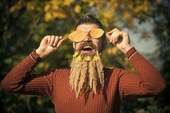 Jahreszeit und Herbstlaub mit Blume Lizenzfreie Stockfotos