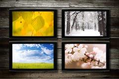 Jahreszeiten Stockbilder