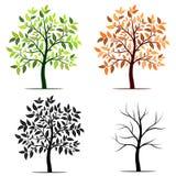 Jahreszeiten des Baumvektorhintergrundes Stockfotografie