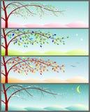 Jahreszeiten des Jahres Vektor Abbildung