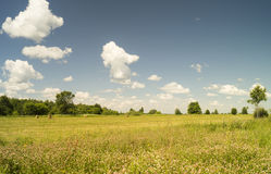 Jahrlandschaft auf blauem Himmel des Hintergrundes Stockfoto