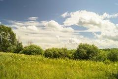 Jahrlandschaft auf Hintergrundhimmel Stockfoto