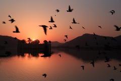 Jai Mahal Sunrise Stock Photography