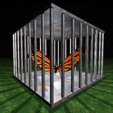 Jail - Prison for one butterfly. Jail - Prison cell illustration by night Stock Images