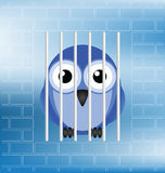 Jailbird. Concept of a jailbird behind bars in prison Royalty Free Stock Images