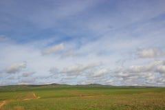 Jaillissez dans la steppe et le ciel de bleus avec des nuages - près d'Almaty Kaz photo libre de droits
