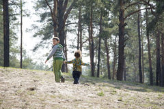 Jaillissez dans une forêt de pin avec la petite soeur de frère tenant des mains Image libre de droits