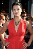 Jaimie Alexander Royalty Free Stock Photo