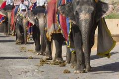 JAIPUR, ÍNDIA - 18 DE SETEMBRO DE 2017: Decoros não identificados do passeio dos homens Imagem de Stock Royalty Free