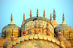 Jaipur fort arkivbilder