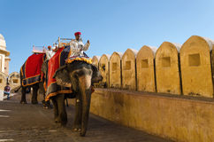 Jaipur, India - December 29, 2014: Tourists enjoy elephant ride in the Amber Fort Stock Photography