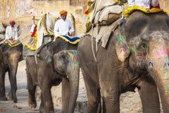 JAIPUR, INDIA - 28 GENNAIO 2017: Il giro non identificato degli uomini decora Fotografie Stock