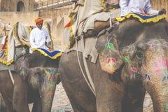 JAIPUR, INDIA - 28 GENNAIO 2017: Il giro non identificato degli uomini decora Fotografia Stock