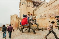 People walking around historical indian Amber Fort and tourists driving elephant. JAIPUR, INDIA - JAN 23: People walking around historical indian Amber Fort and royalty free stock images