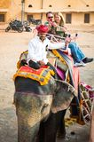 Amber Palace, Jaipur, Rajasthan state, India. JAIPUR, INDIA - JAN 19, 2016: Unidentified Indian man rides an elephant. Indian elephants used to be one of the stock photo