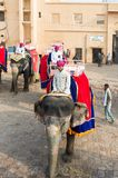 Amber Palace, Jaipur, Rajasthan state, India. JAIPUR, INDIA - JAN 19, 2016: Unidentified Indian man rides an elephant. Indian elephants used to be one of the stock image
