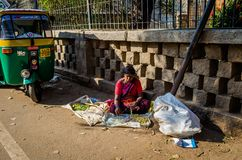 JAIPUR, INDIEN - 25. AUGUST 2017: Indische Frauen verkauft Lebensmittel in den Straßen in Jaipur, Indien Im Verkauf Indien-Arme h Stockbild
