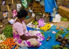 JAIPUR, INDIEN - 25. AUGUST 2017: Indische Frauen verkauft sortiertes Lebensmittel in den Straßen in Jaipur, Indien In Indien-Arm Stockfoto