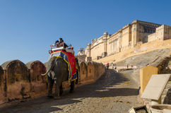 Jaipur, Indien - 29. Dezember 2014: Verzierter Elefant trägt zu Amber Fort Lizenzfreie Stockbilder