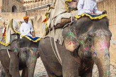 JAIPUR INDIEN - JANUARI 28, 2017: Den oidentifierade manritten dekorerar Royaltyfri Fotografi