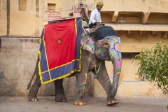 JAIPUR INDIEN - JANUARI 28, 2017: Den oidentifierade manritten dekorerar Arkivfoton
