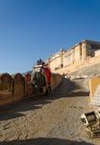 Jaipur, la India - 29 de diciembre de 2014: Elefante adornado en Amber Fort Foto de archivo