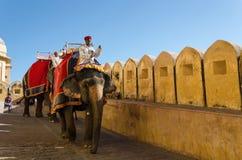 Jaipur, la India - 29 de diciembre de 2014: Los turistas disfrutan de paseo del elefante en Amber Fort Fotografía de archivo