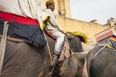 JAIPUR, LA INDIA - 28 DE ENERO DE 2017: El paseo no identificado de los hombres adorna Fotografía de archivo