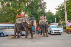 Jaipur, la India - 20 de septiembre de 2017: Hombre no identificado que monta un elefante enorme adornado con colores en Jaipur,  Foto de archivo libre de regalías