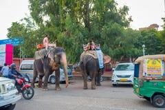 Jaipur, la India - 20 de septiembre de 2017: Hombre no identificado que monta un elefante enorme adornado con colores en Jaipur,  Imagen de archivo libre de regalías