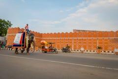 Jaipur, la India - 20 de septiembre de 2017: Hombre no identificado que monta un elefante enorme adornado con colores en Jaipur,  Foto de archivo