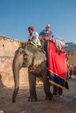 JAIPUR, RAJASTAN INDIA, Styczeń, -, 27: Dekorujący słoń przy Amb Fotografia Royalty Free