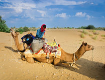 JAISALMER, ΙΝΔΙΑ - 23 ΣΕΠΤΕΜΒΡΊΟΥ: Το Cameleer ξεφορτώνει την καμήλα του κατά τη διάρκεια ενός ρ Στοκ Εικόνα