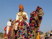 jaisalmer Индии верблюда справедливое Стоковые Фотографии RF