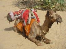 Jaisalmer Obrazy Stock
