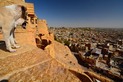 Jaisalmer city view from the fort. Rajasthan. India Stock Image