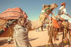 Camel rider in caravan of the outdoor Desert Festival of Rajasthan. JAISALMER, INDIA - FEB 1, 2015: Camel rider in caravan of the outdoor Desert Festival of Stock Image