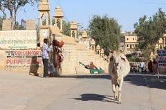 Jaisalmer Indien Royaltyfri Bild