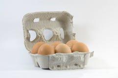 jaja świeże Obraz Stock