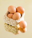 jaja świeże uprawiają Obraz Royalty Free