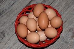 jaja świeże uprawiają Zdjęcia Royalty Free