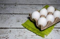 jaja białych kurcząt Zdjęcie Royalty Free