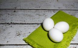 jaja białych kurcząt Zdjęcia Stock