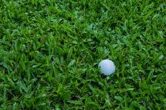 jaja ciupnięcia golf ruch żelaza Zdjęcie Royalty Free