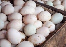 jaja kaczek organicznych Zdjęcie Royalty Free