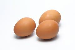 jaja organiczne Żywność Organiczna w Thailand Biały tło Obraz Royalty Free