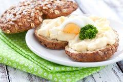 jajeczna świeża sałatkowa kanapka Obraz Royalty Free