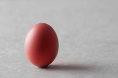 jajeczna czerwień Zdjęcie Stock