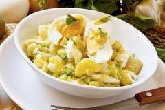 Jajeczna i kartoflana sałatka Obraz Royalty Free